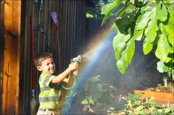 Isaiah-rainbow-01