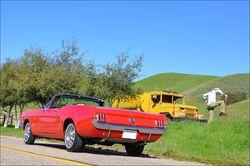 Mustang-supertramp-03
