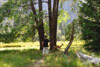 Yosemite-xavi-04