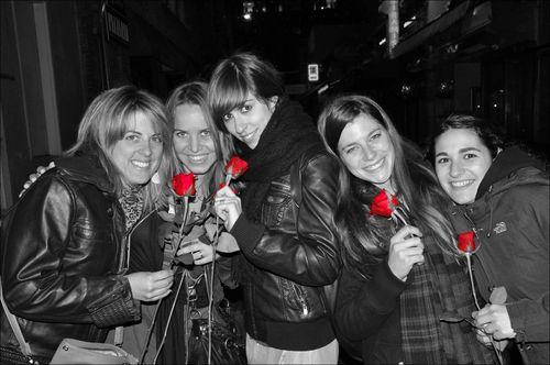 Santjordi-roses