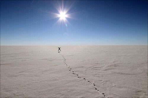 Finalist-august-daveweimer-antarctica
