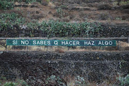 Tenerife-hazalgo